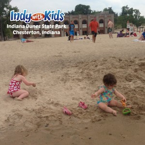 indiana dunes state park sandy beaches