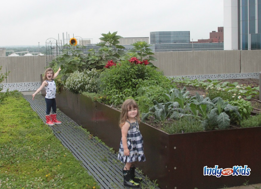 eskenazi health indianapolis city sky farm rooftop garden urban mom kids child