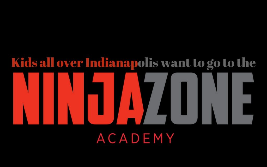NinjaZone Academy in Geist and Westfield