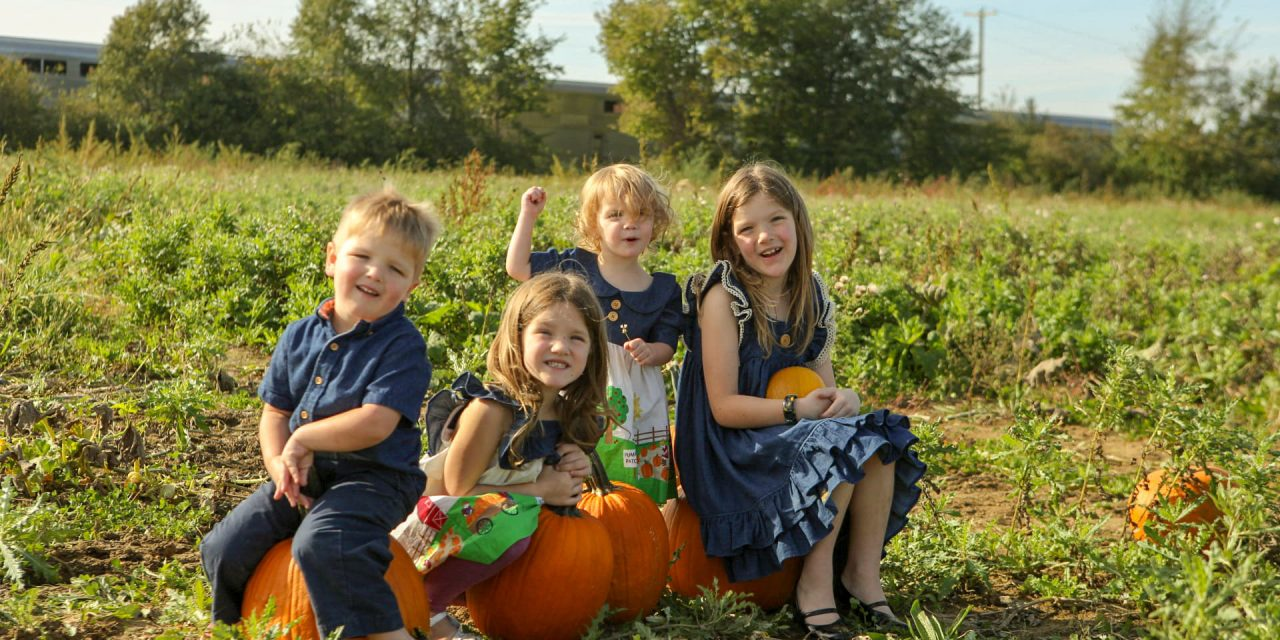 2020 Indianapolis Area Best Pumpkin Patches and Farms